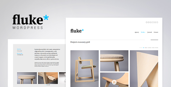 preview_fluke_wp
